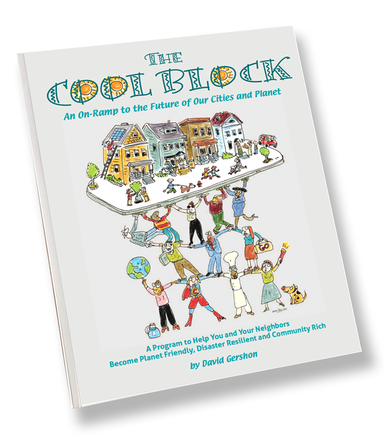 Coolblock book cover